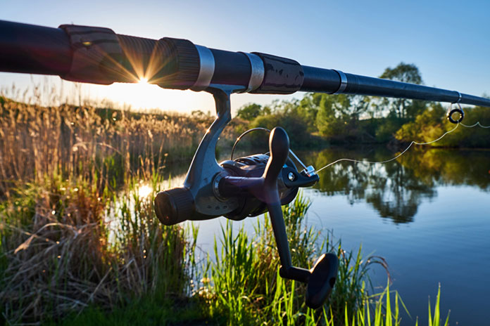 Best Fishing Rods Buying Guide
