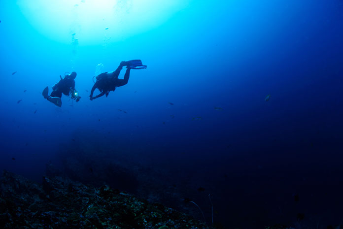 Why Do You Need To Know How Deep Can A Human Dive?