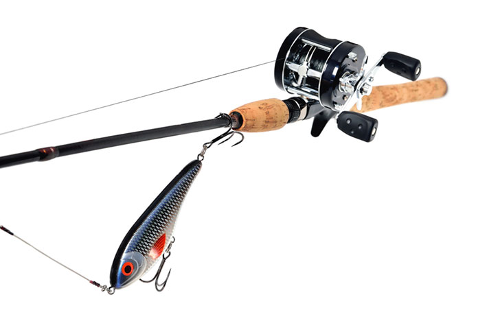 Best Jerkbait Rod: Buyer's Guide