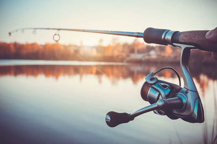 Best Dropshot Rod: Buyer's Guide